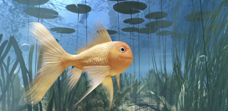 sazka: zlatá rybka